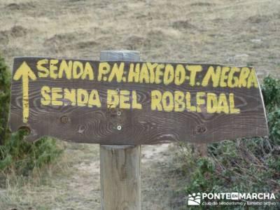 Gente senderista, Parque Natural del Hayedo de Tejera Negra; viajes naturaleza